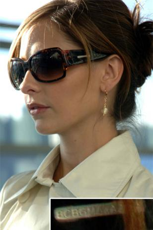 Sarah Michelle Gellar wearing BCBG Max Azria sunglasses